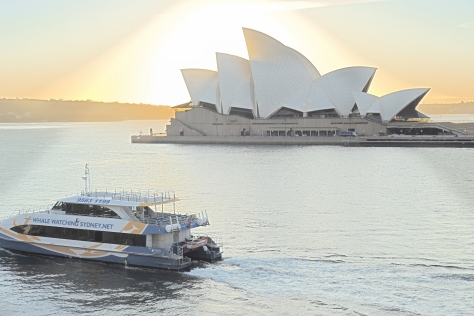 The ultimate spotlight puts a shine on the star attraction of Sydney harbor as an early ferry starts its day of runs across the water.