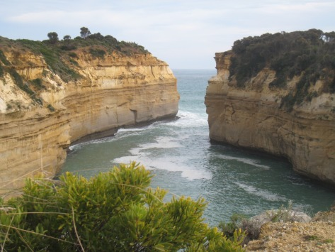 Deep bays have been cut by waves and other effects over millions of years into the soft limestone cliffs.