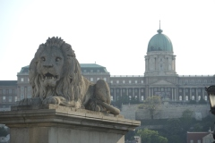 Lion on Chain Bridge, Budapest