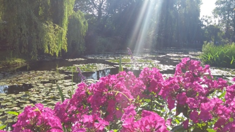 Monet's Water Garden where flowers and light are featured