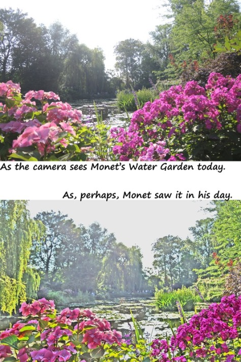 The camera captured Monet's water garden in realism and then something resembling impressionism