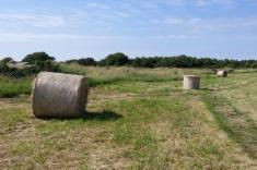 Haystacks at the coast of Normandy