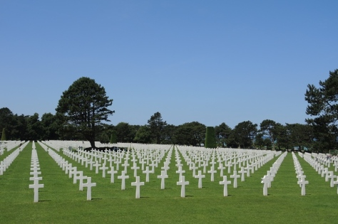 Normandy Crosses rows
