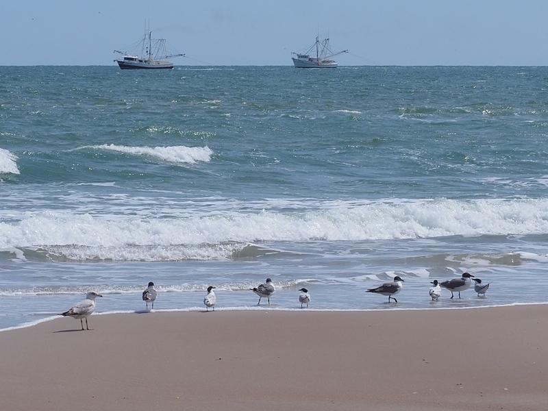 Distance Sea1